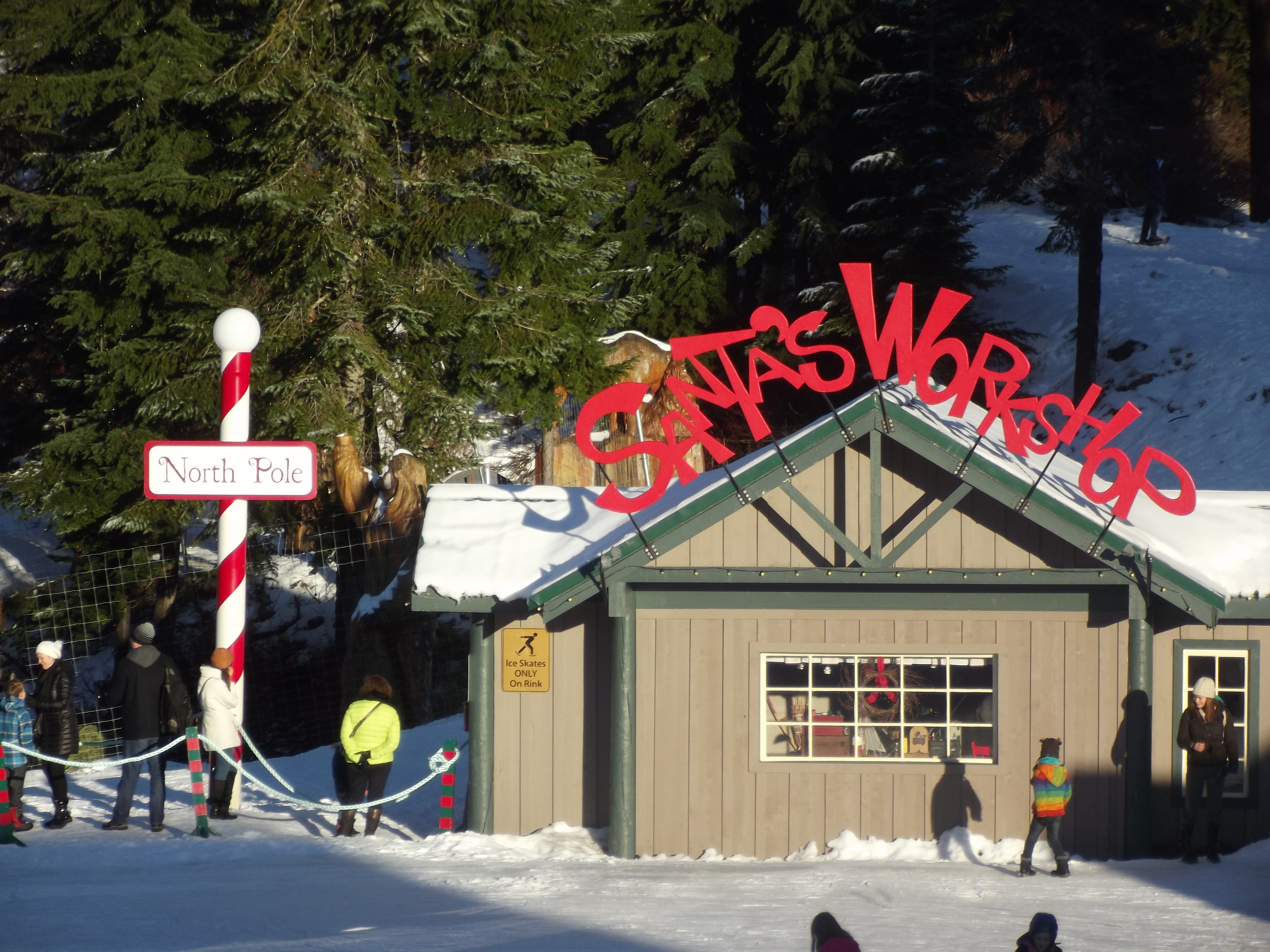 Langley School District: District Trip To Grouse Mountain And VanDusen Gardens